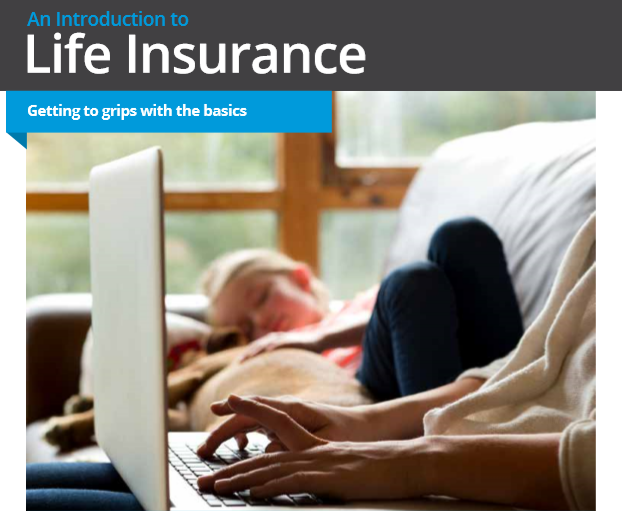 An Introduction to Life Insurance
