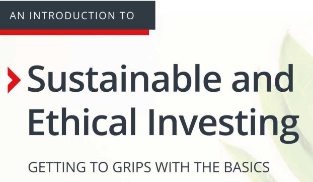 An Introduction to Sustainable and Ethical Investing